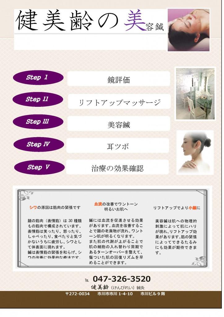 美容鍼DM1